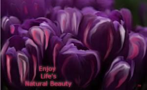 Enjoy Life's Natural Beauty