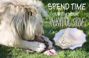spend time with your playful side